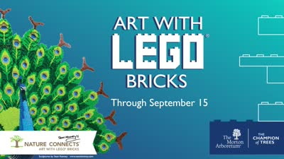 Nature Connects, Art with Lego Bricks animation