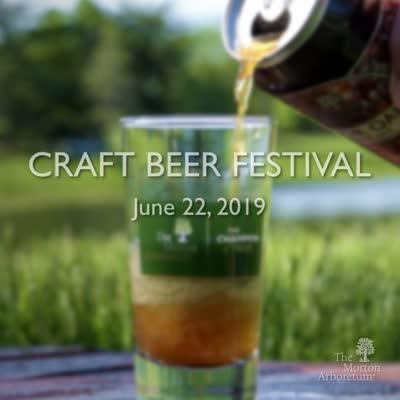 Craft Beer Festival, promo video