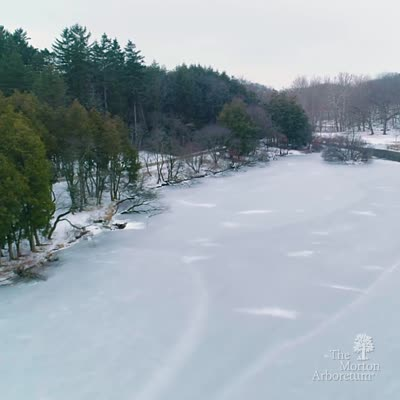 Lake Marmo in Winter video