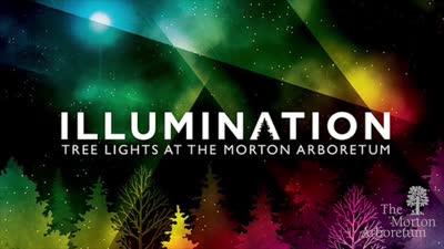 Illumination Board Video