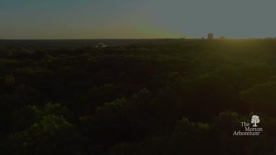 The Morton Arboretum Membership video
