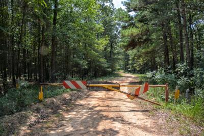 Gate to FR 547-C, Bienville National Forest