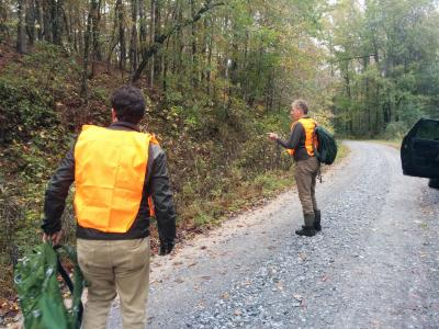 Roadside collecting at Talladega National Forest, Oakmulgee District