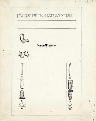 Evergreen Nature Trail Guide, page 3 illustrations and layout