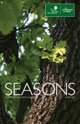 Seasons: Summer 2020