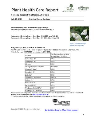 Plant Health Care Report: 2020, July 17 Growing Degree Day Issue
