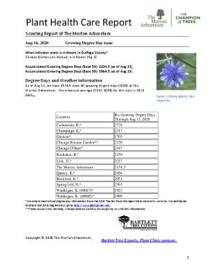 Plant Health Care Report: 2020, August 14 Growing Degree Day Issue