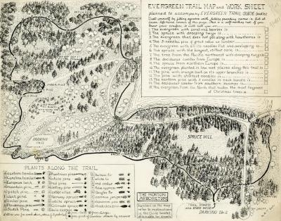 Evergreen Nature Trail Guide: evergreen trail map and work sheet