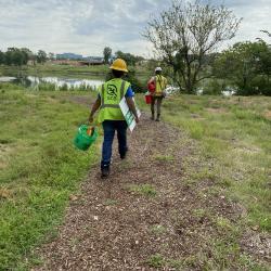2020 Tree Census field crew taking measurements (2)
