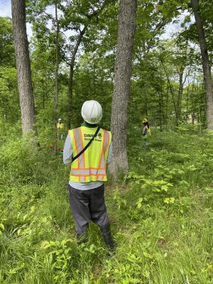 2020 Tree Census field crew taking measurements in plot 3033