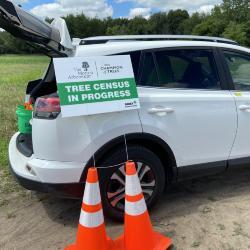 2020 Tree Census Field Crew