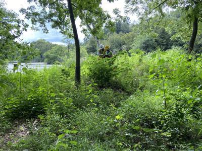 2020 Tree Census field crew taking measurements (6)