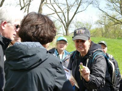 Adult Education, Trees and Nature, Spring Wildflower Walk