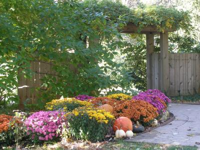 Fall Horticulture Display