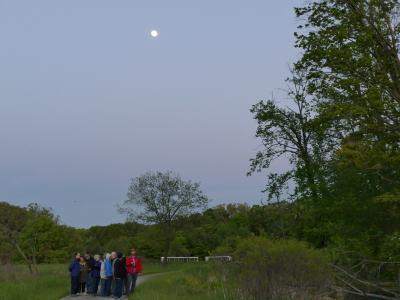 Adult Education, Trees and Nature, Full Moon Tram Tour