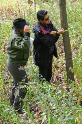 Adult Education, Trees and Nature, Field Ecology
