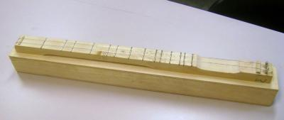 Adult Education, Natural History, The Science and Craft of Wooden Instruments