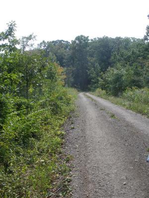 Adult Education, Woodland Stewardship Program, Heritage Trail Tour