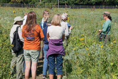 Adult Education, Trees and Nature, Summer Prairie Walk