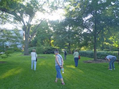 Adult Education, Wellness and Green Living, Forest Therapy Walk