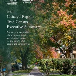 2020 Chicago Region Tree Census Executive Summary
