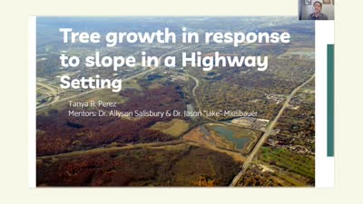Tree growth in response to slope in a Highway Setting