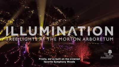 Illumination: Tree Lights at The Morton Arboretum, Ticket Teaser