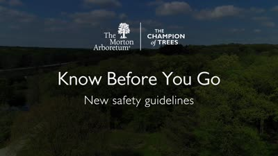 Know Before You Go, Safety Guidelines Video