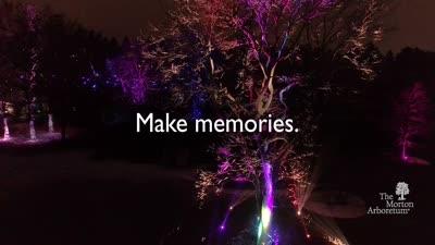 Illumination: Tree Lights at The Morton Arboretum, Promotional Video [during promotion]