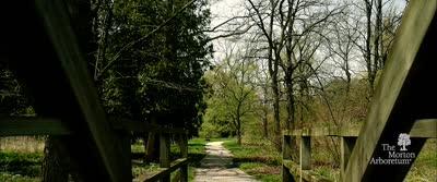 Evergreen: The Virtual Gala for The Morton Arboretum, Promotional Video