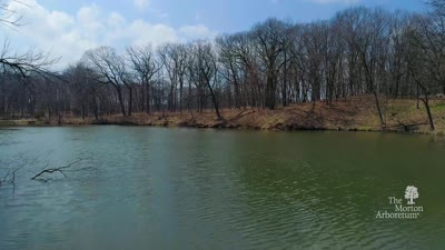 Virtual Flyover of Sterling Pond