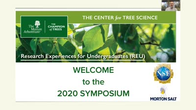 2020 Research Experiences for Undergraduates (REU) Symposium: Introduction by Chuck Cannon