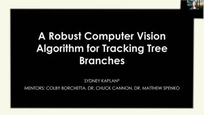 A Robust Computer Vision Algorithm for Tracking Tree Branches