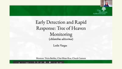 Early Detection and Rapid Response: Tree of Heaven (Ailanthus altissima) Monitoring