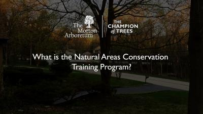 What is the Natural Areas Conservation Training Program?