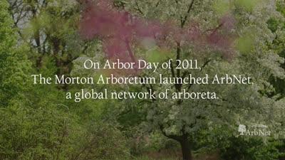 ArbNet 10 Year Anniversary Video