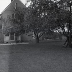Propagator's house and yard at South Farm, rear view