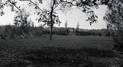 Yard at Clarence Godshalk's first Arboretum house, pergola and gate in the distance