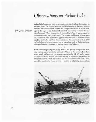 Observations on Arbor Lake