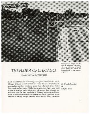 The Flora of Chicago: Tenacity & Enterprise