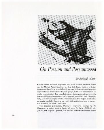 On Possum and Possumwood