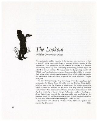 The Lookout: Wildlife Observation Notes