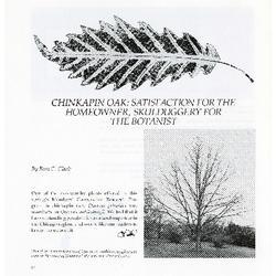 Illustrations of West American oaks