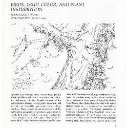 Birds, Fruit Color, and Plant Distribution