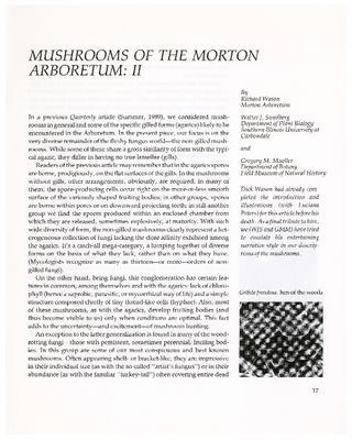 Mushrooms of the Morton Arboretum: II