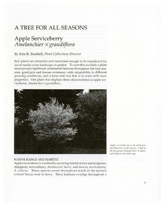 A Tree for All Seasons: Apple Serviceberry, Amelanchier x grandiflora
