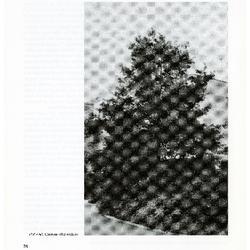 IUCN Red List of US Oaks