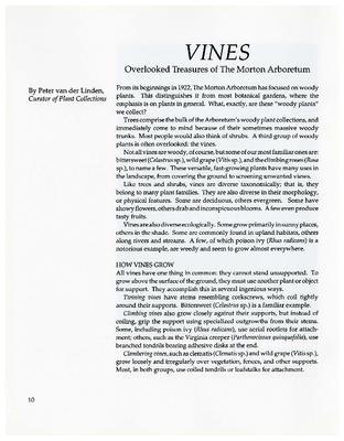 Vines: Overlooked Treasures of The Morton Arboretum