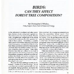 Birds: Can They Affect Forest Tree Composition?