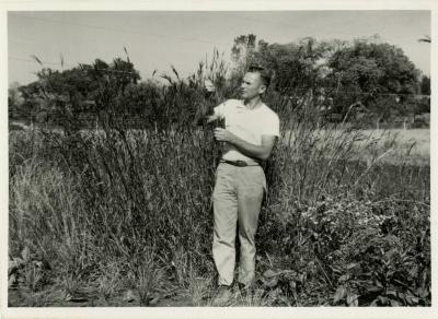 Ray Schulenberg studying plant in prairie during prairie restoration